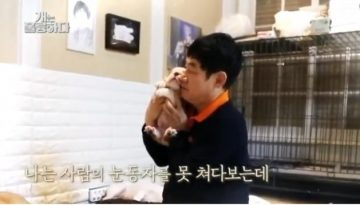 Magnificent Dogs Episode 12 English Sub